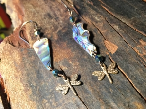 Abalone dragonflies